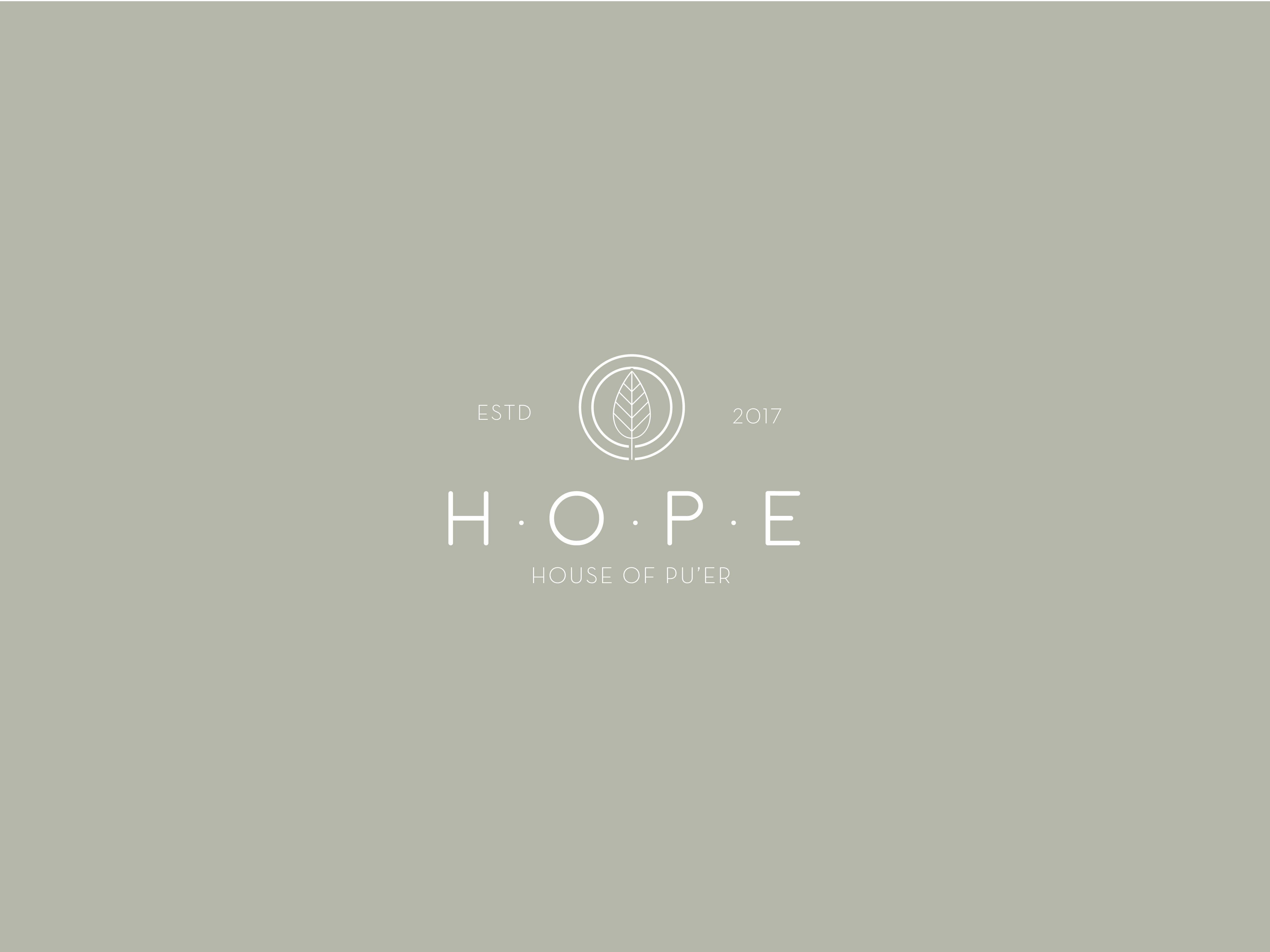 mariebabeau-graphiste-photographe-independante-freelance-strasbourg-creation de logo-identite-marque de the-HOPE.-3jpg